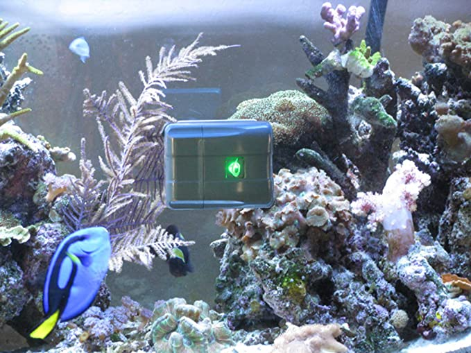 AquaGenesis RSV1A product image 8