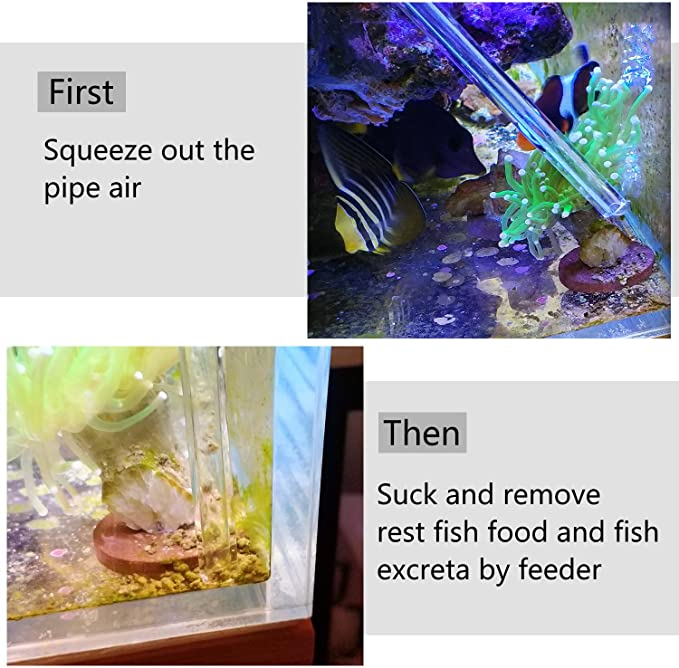 Aquarium Choice  product image 6