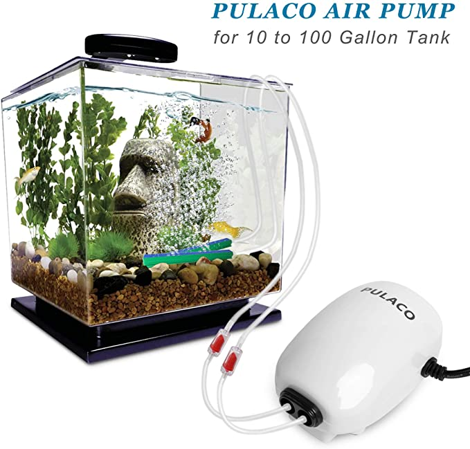 PULACO  product image 2