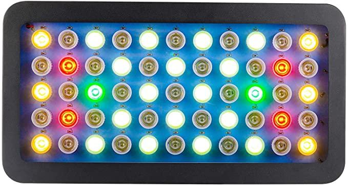GYIELDS  product image 8
