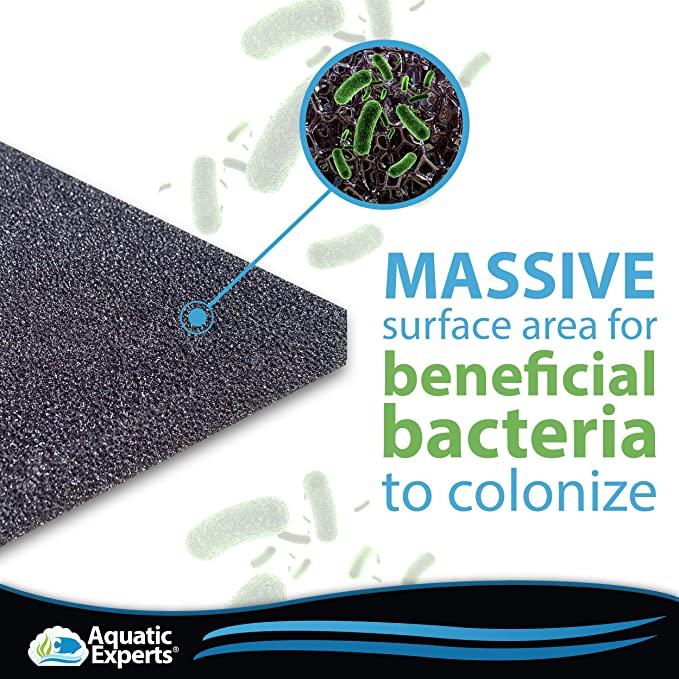 Aquatic Experts  product image 7