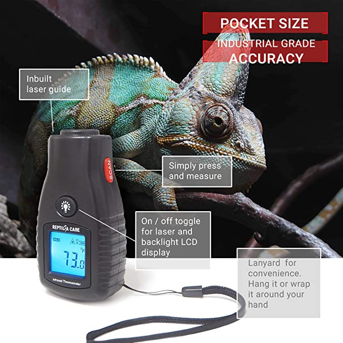 Reptilia  product image 5