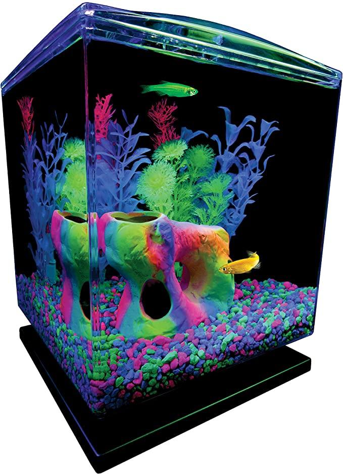 GloFish 29236 product image 1